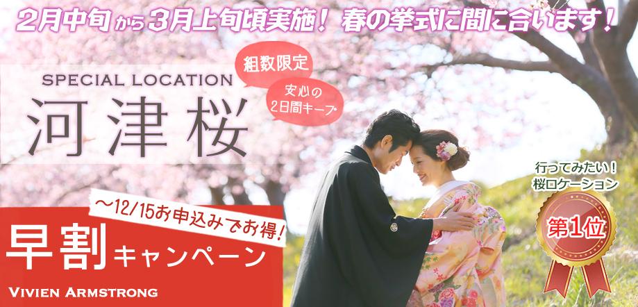 河津桜で前撮り桜ロケーション