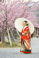 早咲きの桜ロケーション