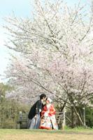 春の桜ロケーションは心も踊る思い出の写真に
