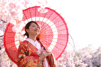 桜に囲まれ春の訪れを感じるご新婦様