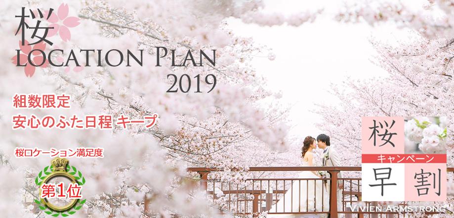 満開の都内桜ロケーションフォトは春の前撮りがオススメです