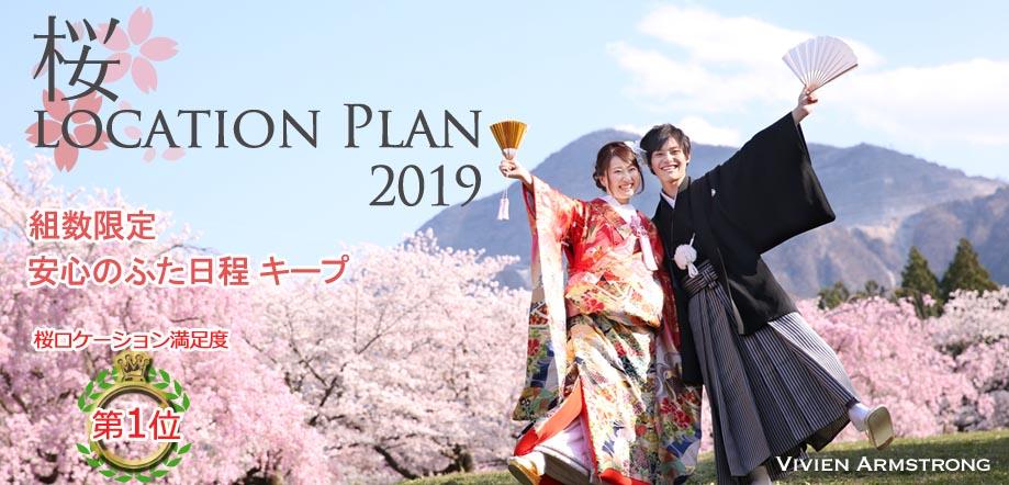 埼玉のオススメ桜ロケーションフォト和装前撮り