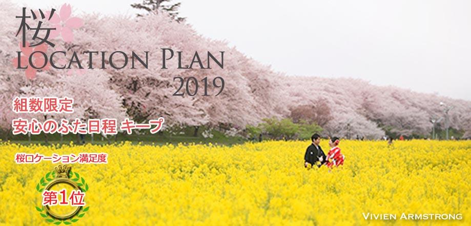 埼玉権現堂の桜並木で和装前撮り