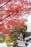 花畑記念庭園で和装の紅葉ロケーション撮影
