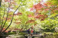 木々が色づき始めた清澄庭園でのロケーション撮影