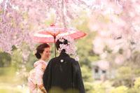 しだれ桜が満開の中幸せそうな新婦様