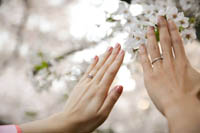 大切人と一緒に桜の思い出を