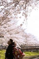 桜ロケーションでも撮りたい、背中合わせショット