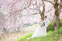 物語のようなロケーションの桜前撮り
