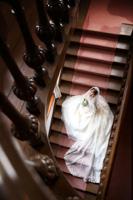 英国様式が特徴の旧古河邸の階段