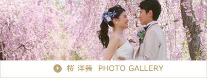 桜洋装フォトギャラリー