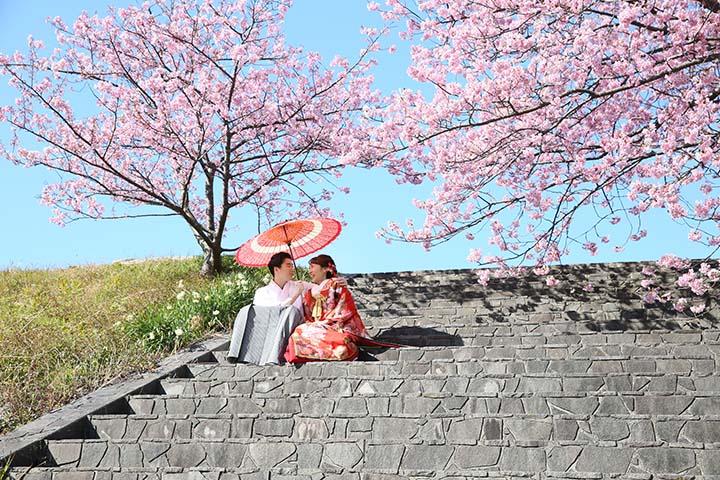 青空と桜の下で和装前撮り