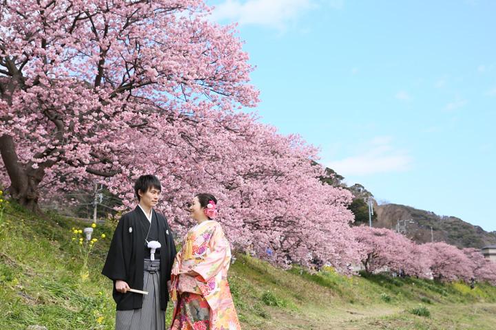 みなみの桜と菜の花まつりでフォトウェディング