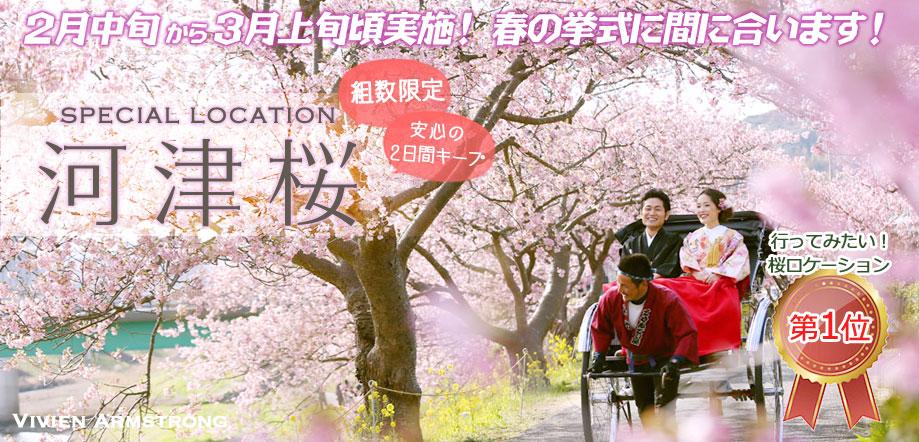 河津桜で和装ロケーションフォト